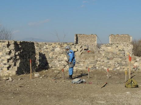 В Джоджуг Мерджанлы будет заложен новый поселок из 150 домов