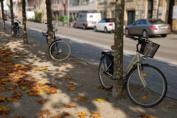 Британские ученые: езда на велосипеде почти вдвое снижает риск рака
