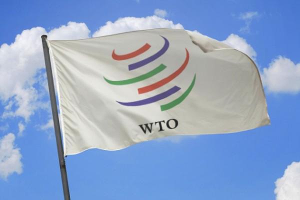 В переговорах в связи с ВТО серьезного прогресса нет