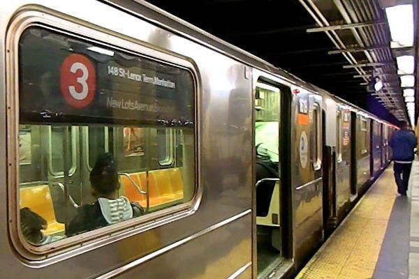 Крыса в вагоне нью-йоркского метро вызвала панику у пассажиров